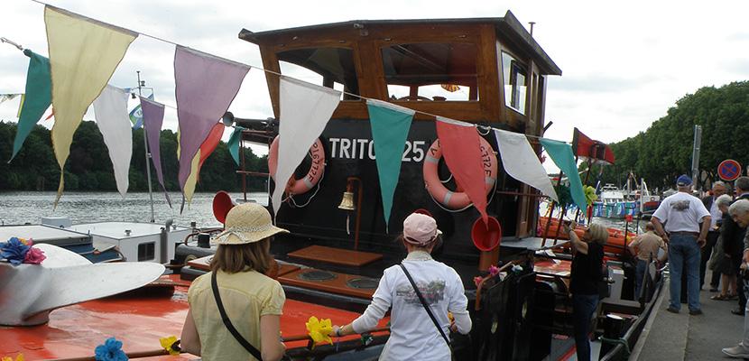 triton 25