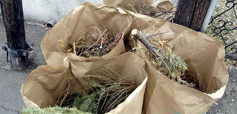 distrib sacs déchets verts