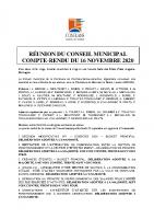 CR CM 16 novembre 2020